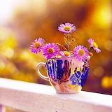 ~Sweet Flowers~