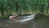 Sinking on the Amazon