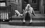 New-York-City-USA-2000-©-Elliot-Erwitt-Magnum-Photos-620x388