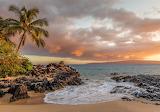 Beach-sea-sand-rocks-palm-nature