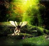 Forest pixie by masukiamaru d3k7iif-fullview