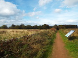 The Waggonway Fields