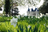 Could be the best garden's exhibition in France:GO TO Chaumont!