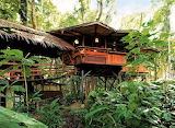 #Tree House Costa Rica