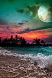 Moonlight on the Beach