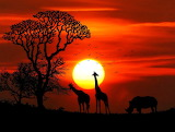 African Sunset...