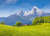 Alps-with-meadows