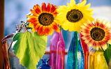 Sunflower in glass bottles