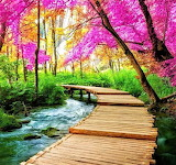 #Colorful Tranquility