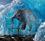 Mammoth Frozen in Ice - Siberia