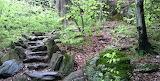 Stone Step Trail