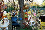 Chairy Orchard Denton, Texas
