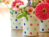 FlowersAndPolkaDots