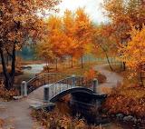 orange pathway