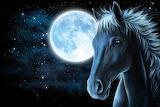 La luna y el caballo