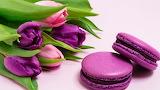 Purple is elegant