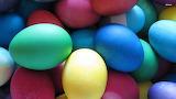 Eggs 6