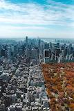 Autumn In Central Park, New York City, New York, USA