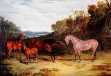 Horses in a Landscape by John Frederick Herring, Snr