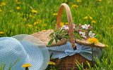 picnic basket and blue hat