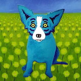 Bluedog2