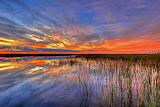 Colorful-everglades-sunset