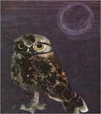 "Birds tumblr dogstardreaming Owl ""Mirko Hanák"" Czech 1921-1971"