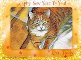 Teddy New Year Selfie