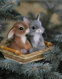 ^ Bunnies in Basket