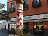 Guerilla crochet auf Teneriffa