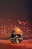Skull flight