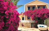 Bright Arbors in Greece