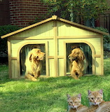 Duplex Dog House with house warming gifts