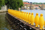 Prague, Carlo bridge, penguins