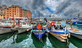 Camogli harborjpg