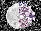 Moon Abloom II by EC Mazur