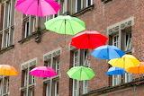 Зонтики в городе