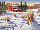 Frozen Fields / Gefrorene Felder