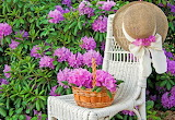Flowers,, chair, hat, basket, greens