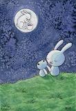 Moonbuns, Megan Baehr
