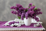 Flowers, table, bouquet, fabric, white, vase, lilac, tablecloth