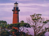 Lighthouse with trees