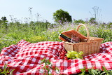 Summer picnic. Bread, fruit and wine.