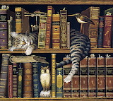 ☺ The cat who loved books...