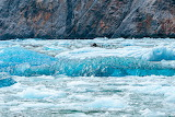 Ice in Tracy Arm Fjord