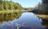 Guilder Pond Highest Elevation Pond in Massachusetts