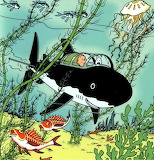 11 - Tintin et le trésor de Rackham le rouge - 1