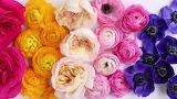 Rainbow Wedding flowers
