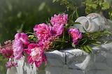 Flowers, bouquet, peonies, vase