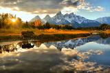 moose water mountains